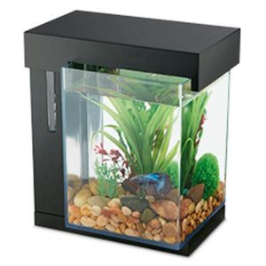 National Geogrpahic™ 1 Gallon Easy Clean Aquarium