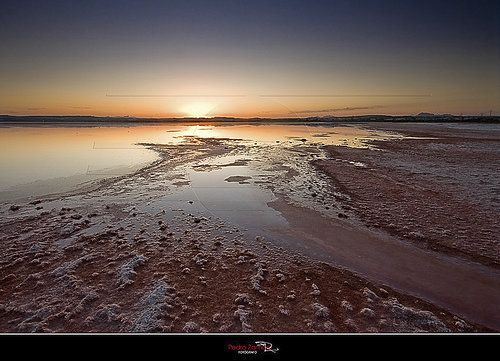 Laguna Rosa Atardecer Lagunas Torrevieja Guardamar Del Segura