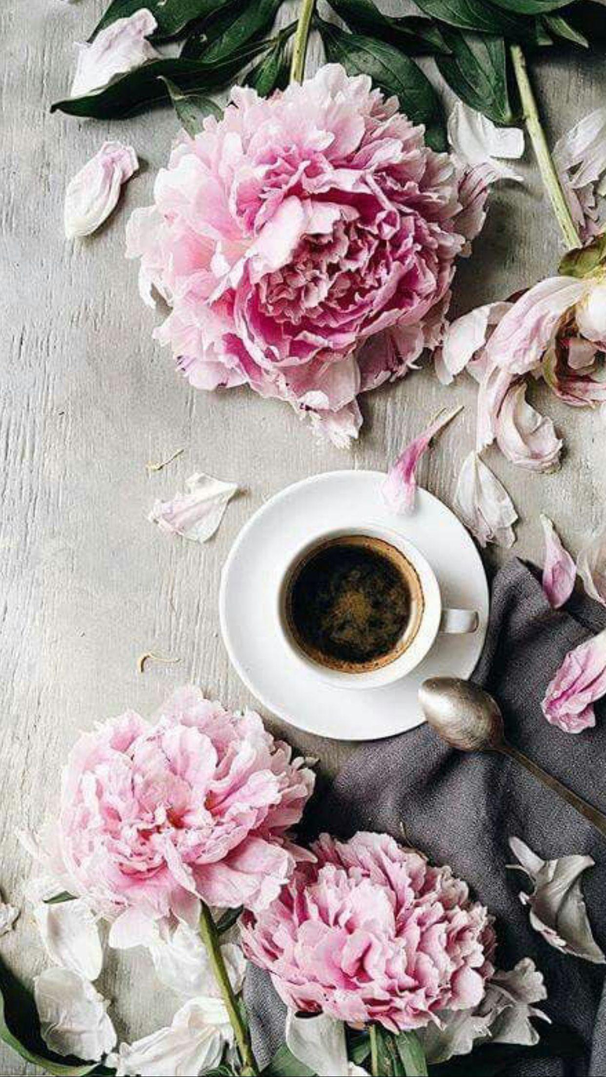 Pin by Noora on Coffee and tea Coffee flower, Coffee art