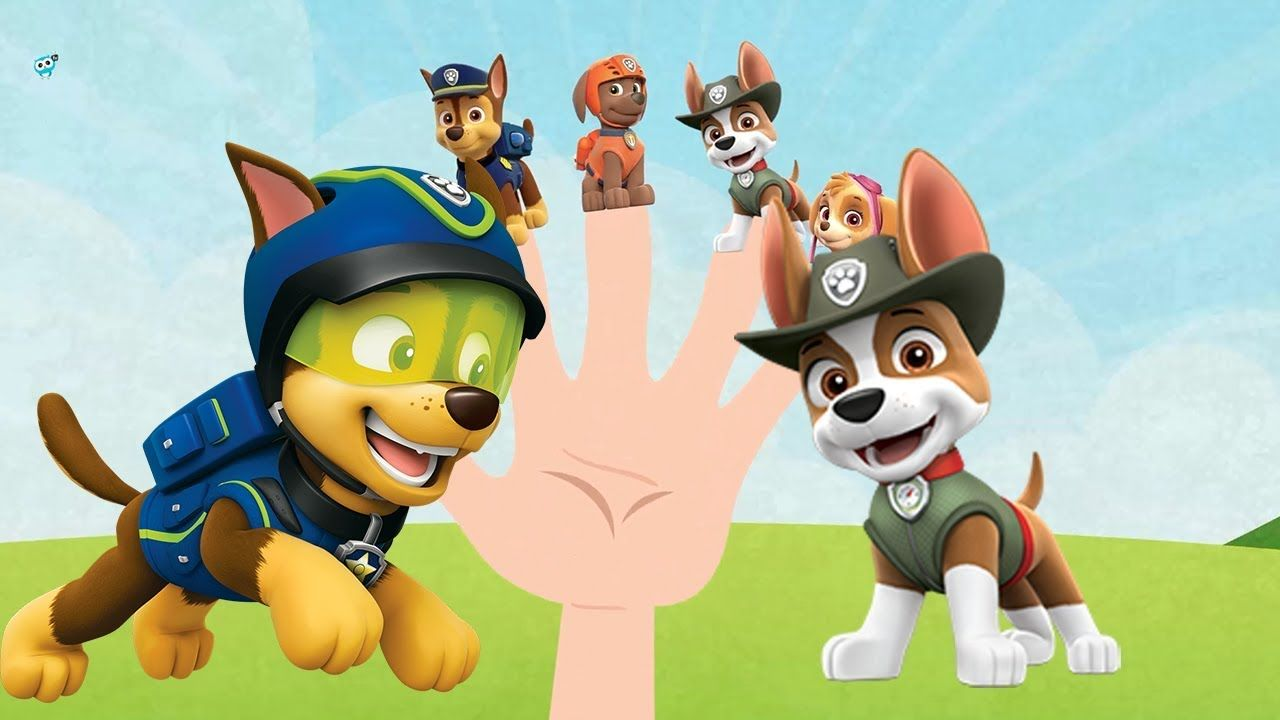 Paw Patrol Funny Finger Family And Save The Sheep Pawpatrol