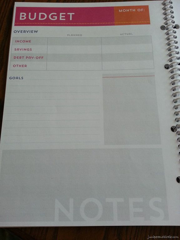 Michael S Recollections Budget Book Budget Page Planners