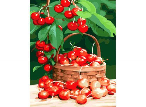 Картина по номерам «Спелая вишня» | Фруктовые композиции ...