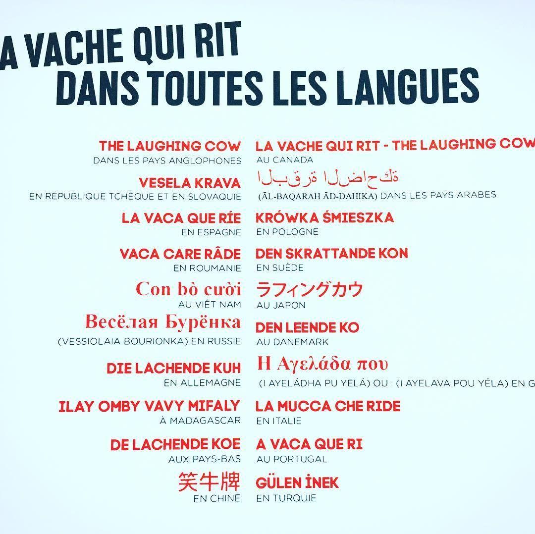 Le #rire est universel... #lavachequirit aussi 😍. . 📷 @maisonvqr .  #france #uk #usa #slovaquie #spain #romania #vietnam #russi… | Laughing cow,  Algeria, Universel