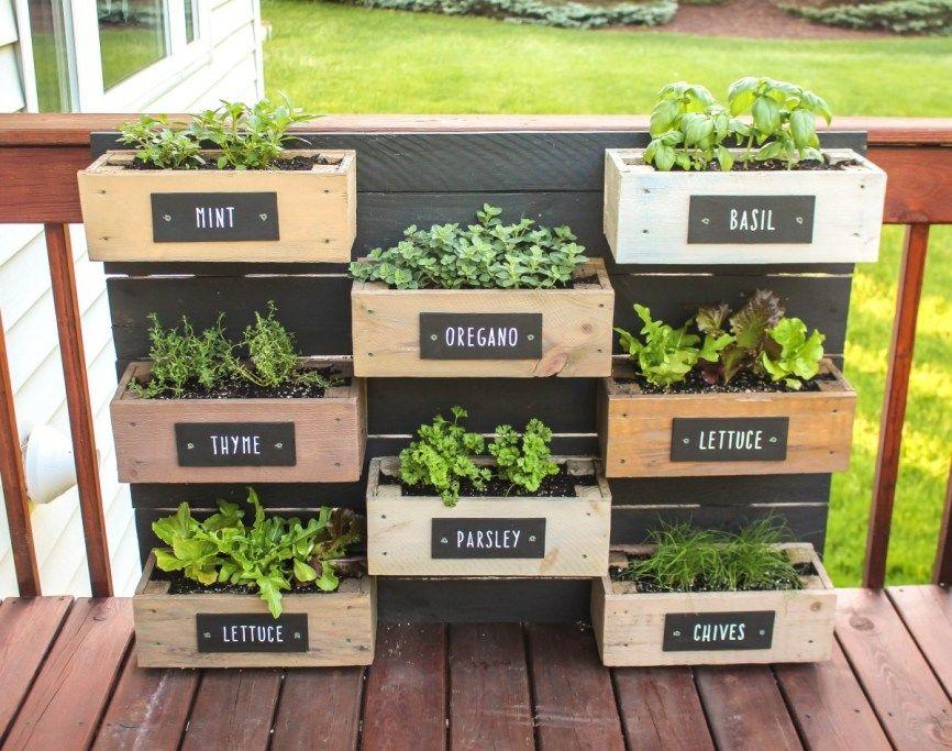 36+ Famous DIY Vertical Herb Garden