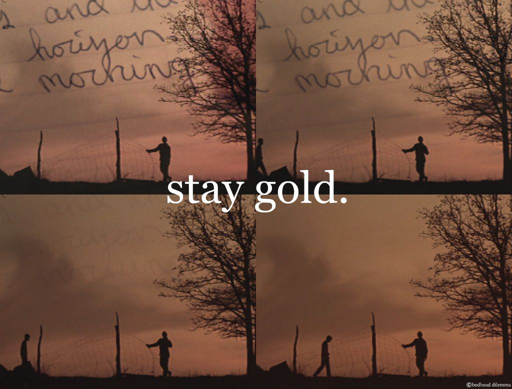 Stay Gold Like The Way You Dig Sunsets Pony Thats Gold