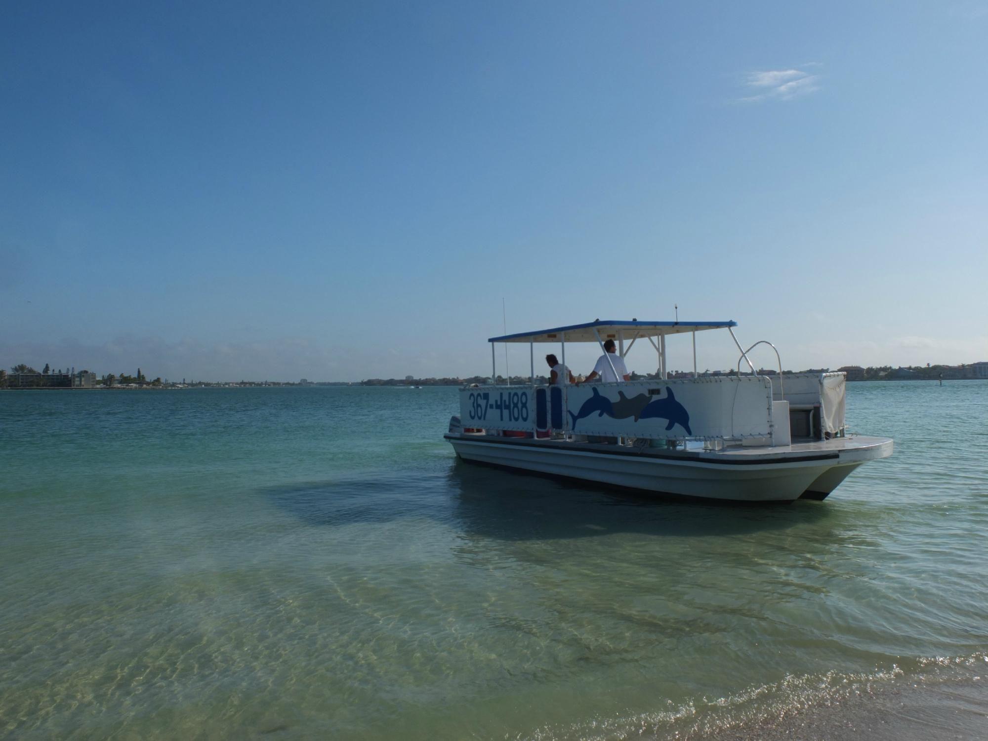 Dolphin landings charter boat center saint pete beach