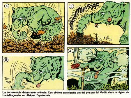 Comic creator: Gotlib (Marcel Gotlieb) | Lambiek Comiclopedia
