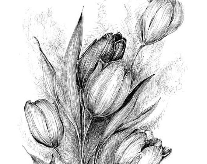 Browse Unique Items From Krazykatlady2015 On Etsy A Global Marketplace Of Handmade Vintage And Creative Goods Flower Drawing Tulips Art Flower Sketches