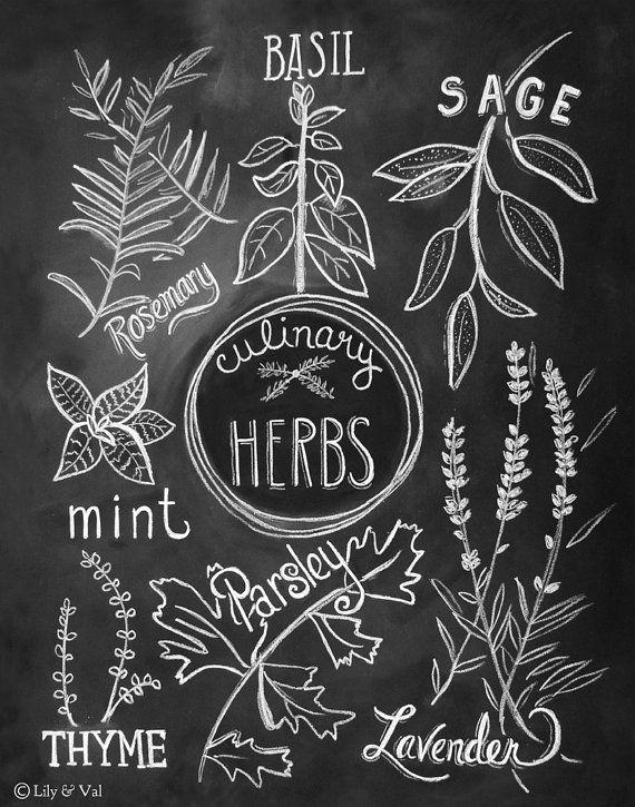 Beautiful Kitchen Illustration Print  Culinary Herbs Print   Kitchen Art   Kitchen  Chalkboard Art   Chalk