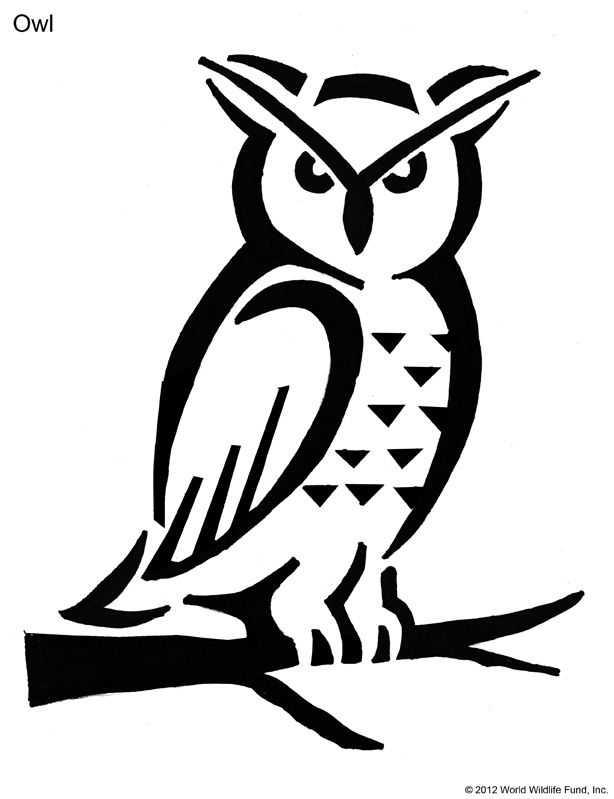 free picuture owl stencil hd download owl stencil cute animal
