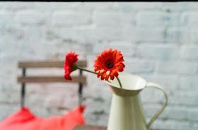 andrajos: receitas de primavera '15 // spring recipes '15