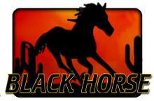 чёрная лошадь игровые автоматы
