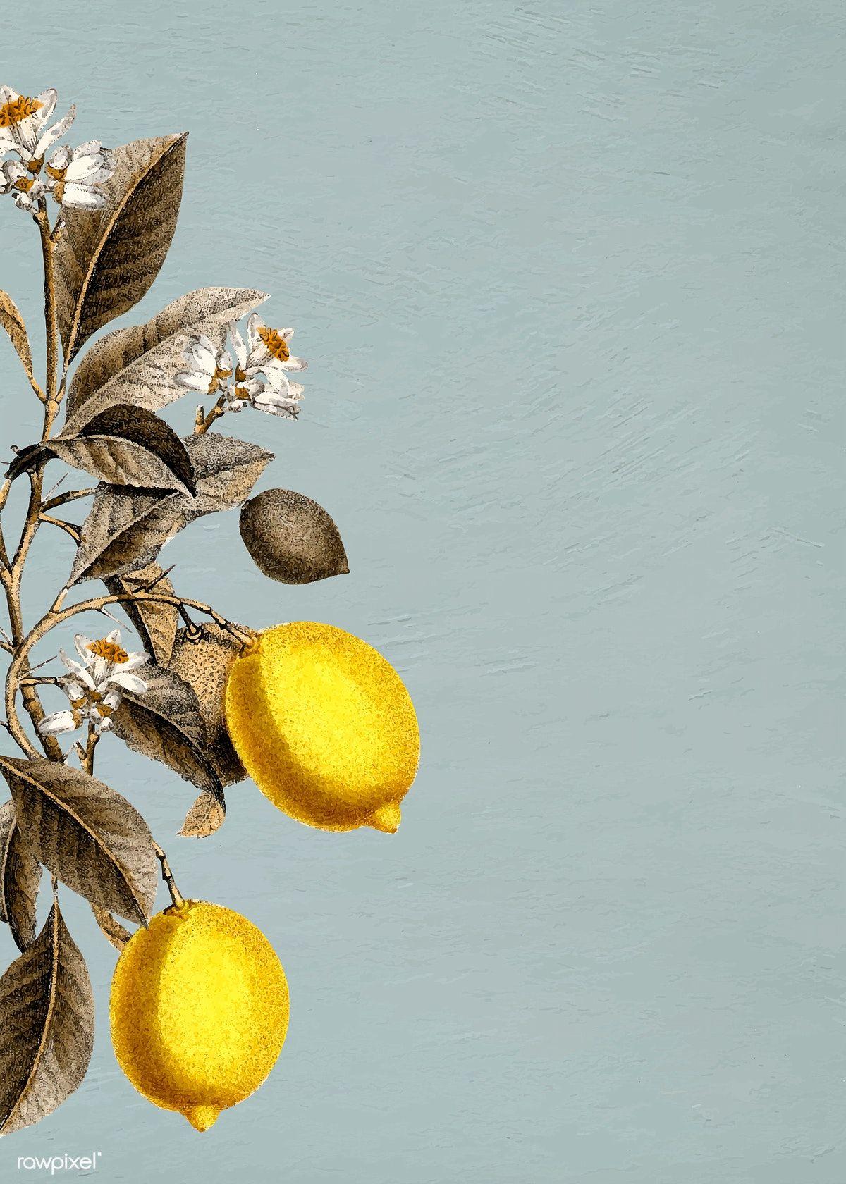 Download premium illustration of Tropical lemon on a blue