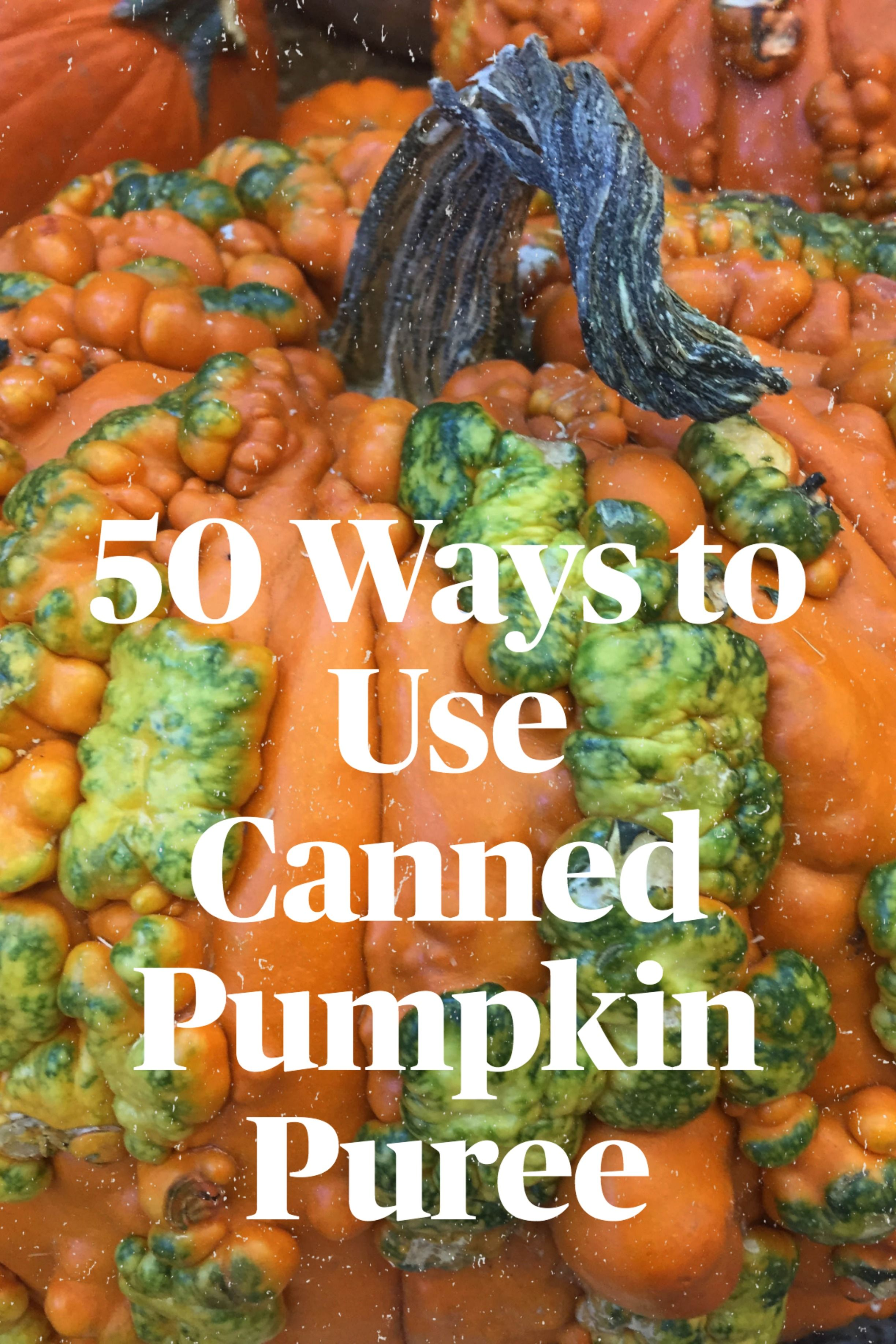 50 Ways To Use Canned Pumpkin Puree Canned Recipes Healthy Desserts Savory Dinner And More In 2020 Pumpkin Puree Pumpkin Puree Recipes Pumpkin Puree Recipes Healthy