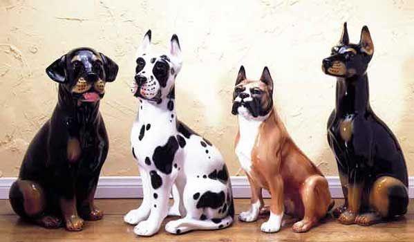Rottweiler Great Dane Boxer Doberman With Images Italian