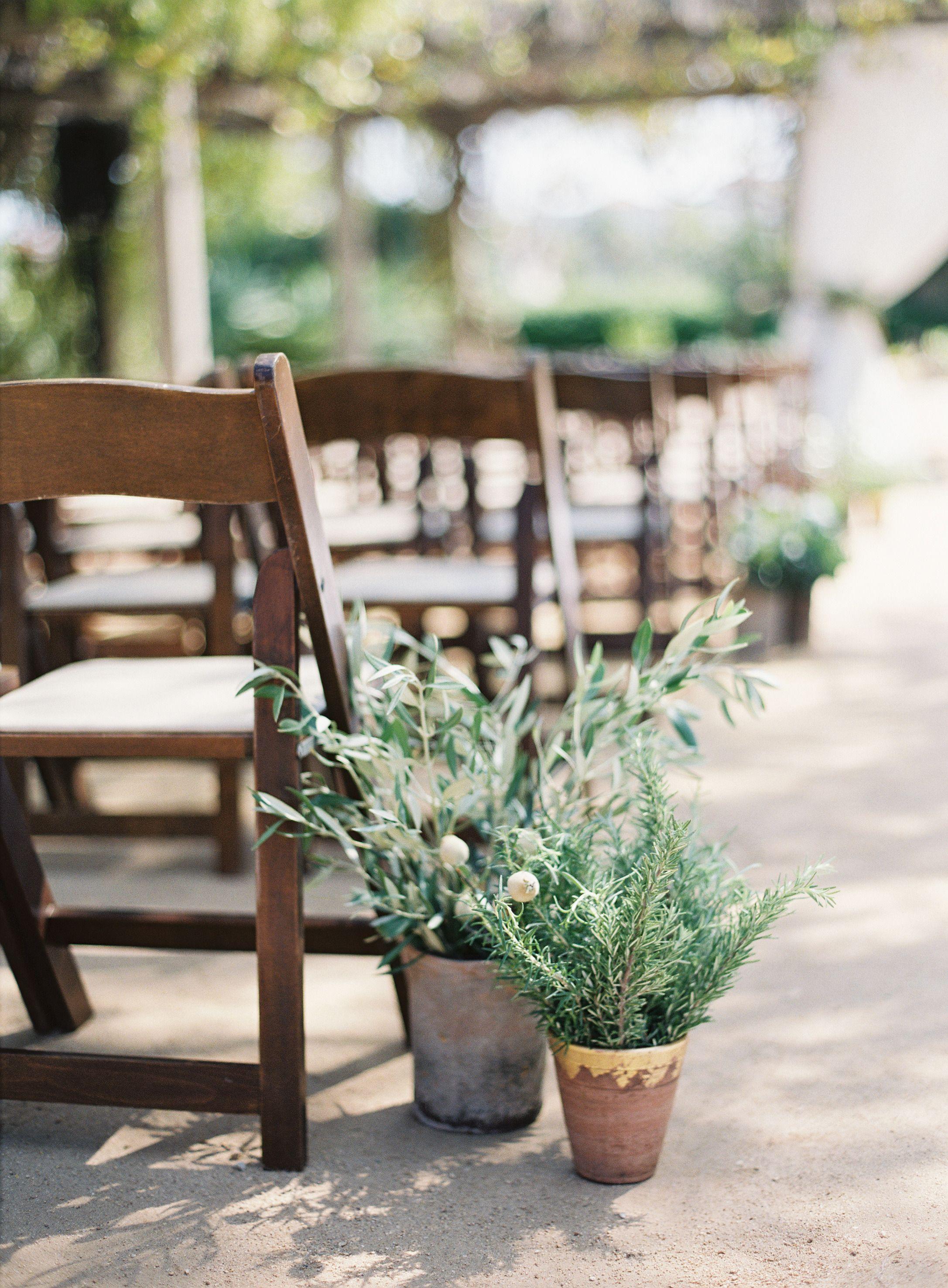 Potted Plants Lining Isle | Photography: Patrick Moyer Photography - patmoyerweddings.com Read More: http://www.stylemepretty.com/2015/01/28/rustic-glam-santa-barbara-wedding/