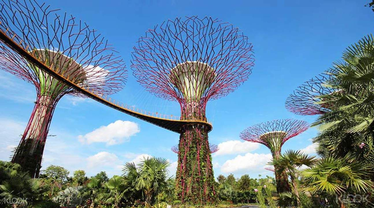Singapore Gardens by the Bay Tickets (Cloud Forest