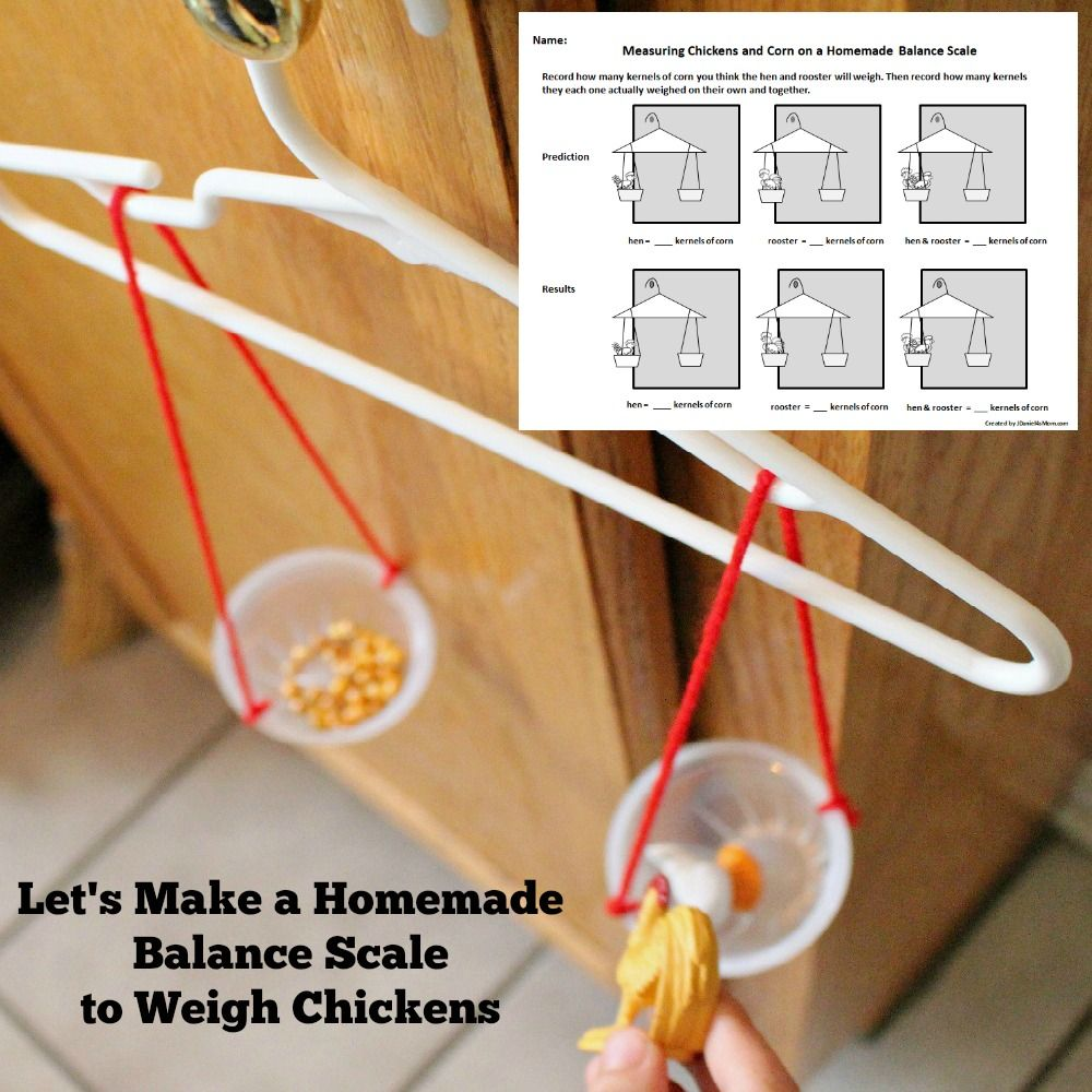 Let S Make A Homemade Balance Scale To Weigh Chickens Math Activities Preschool Diy Science Preschool Math Centers