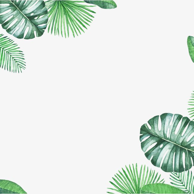 Green Fresh Border Texture Png Free Download Leaf Background
