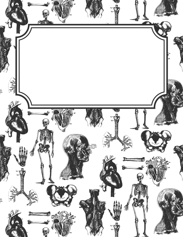 Free printable anatomy binder cover template. Download the cover ...