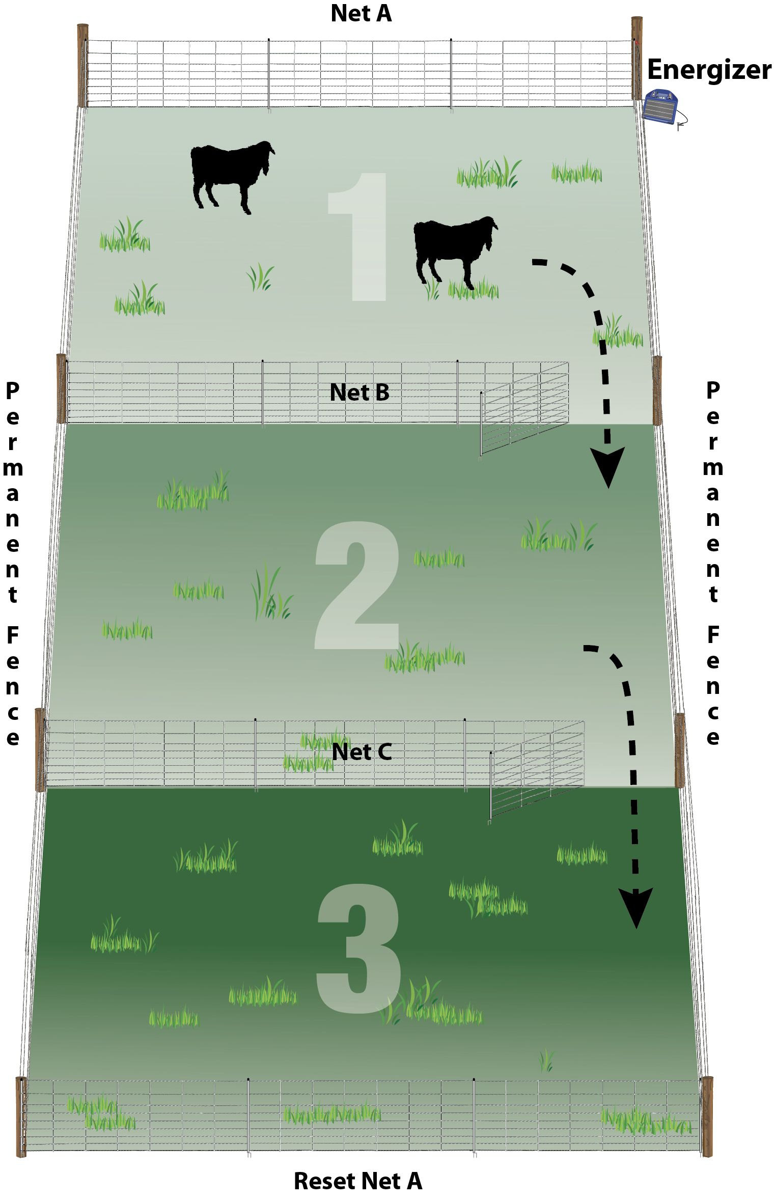 Practical Pasture Configurations For Rotational Grazing