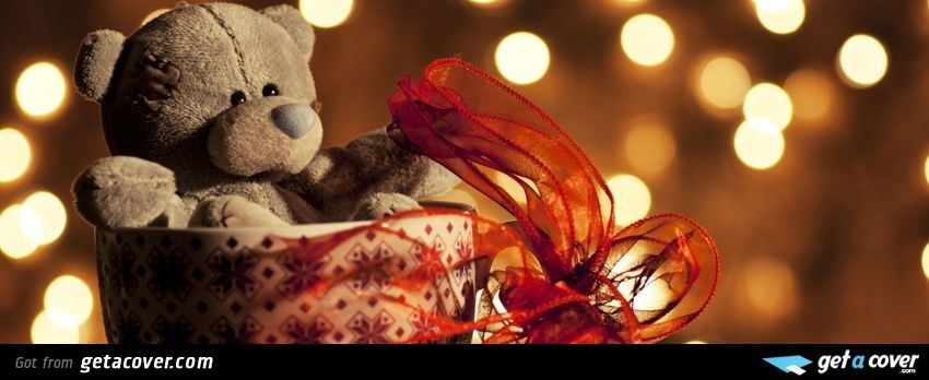 A Stunning Cute Teddy Bear Facebook Cover For Your Fb Timeline