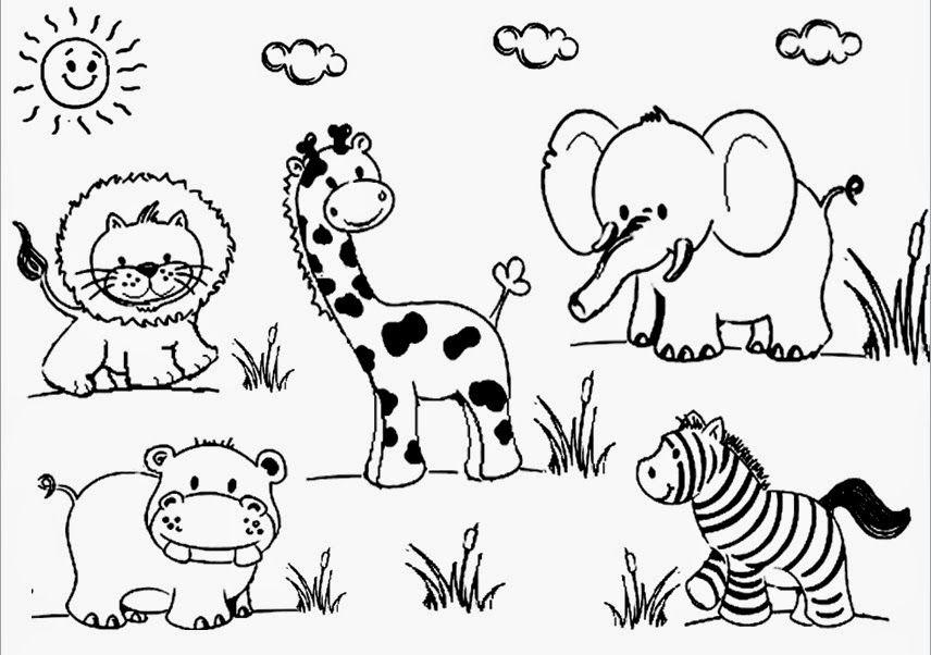 Dibujos De Animales Para Colorear Animales Dibujos De Animales