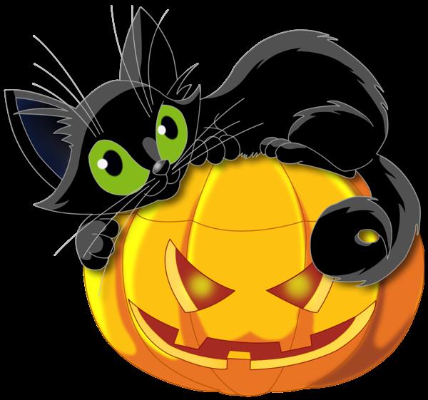 halloween sorciere chaudron chat noir Halloween