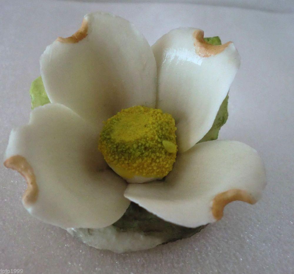 Napoleon porcelain by capodimonte italy quot dogwood flower