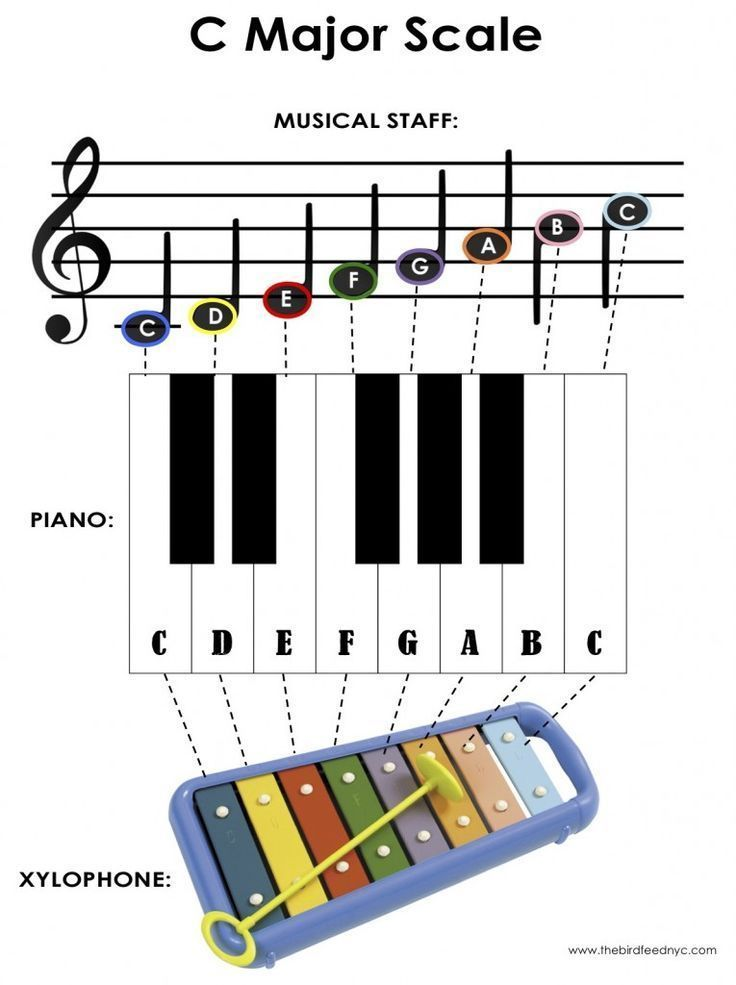 Activity For Kids The C Major Scale On The Piano And Xylophone Music Lessons For Kids Music For Kids Xylophone