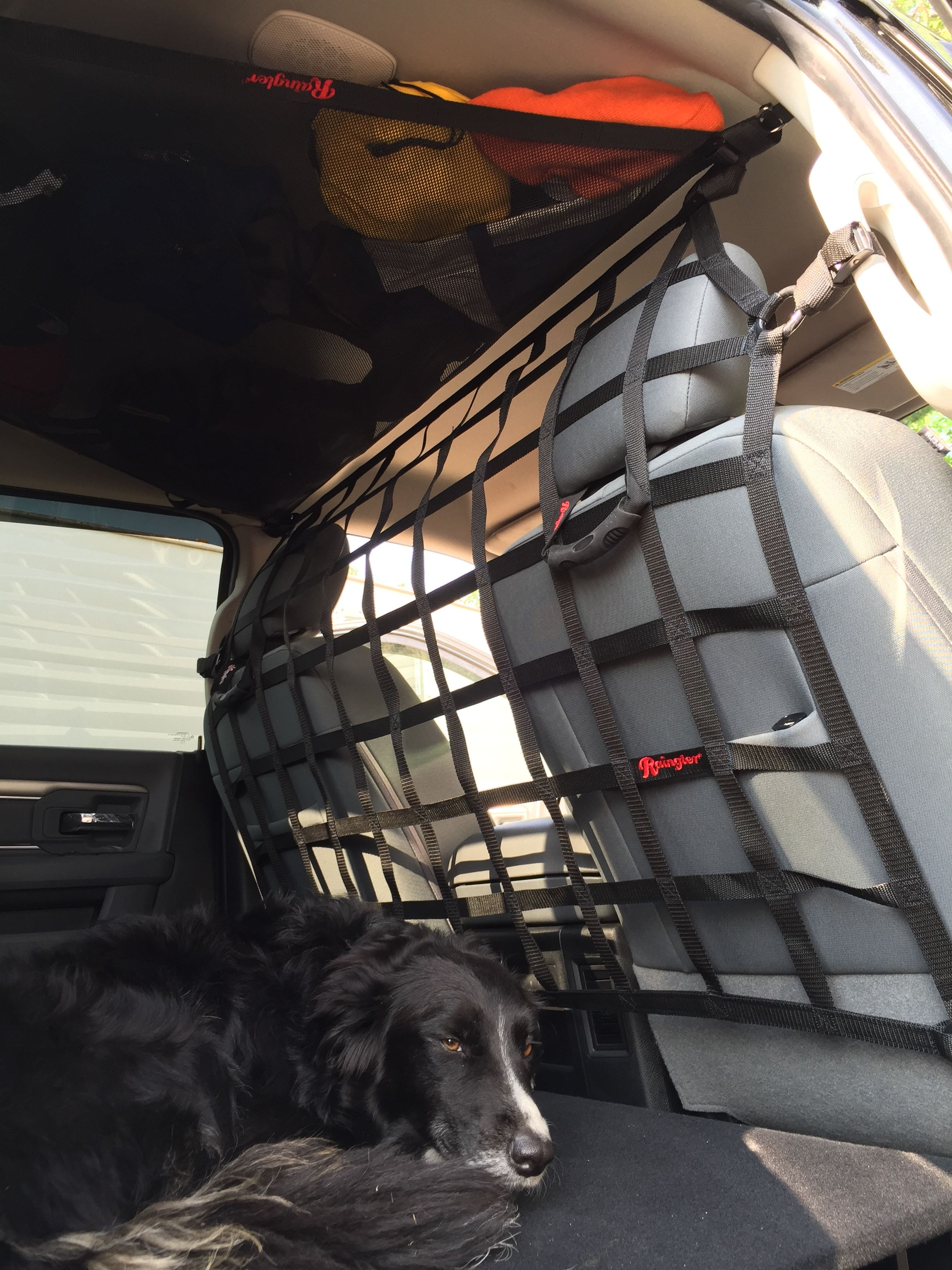 305d4186ca251333f63c0fc67acb1eb7 Take A Look About Jeep Dog Accessories with Captivating Gallery Cars Review
