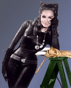 lee meriwether pictures