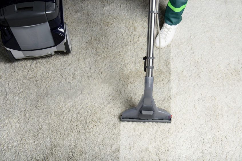 Koala Carpet Cleaning Sydney in 2020 Steam clean carpet
