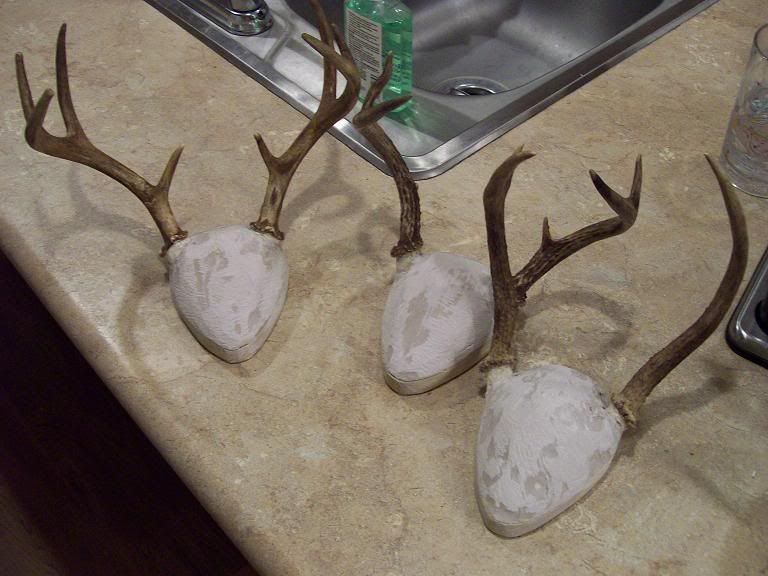 Do It Yourself...Antler Mount Kits The Michigan