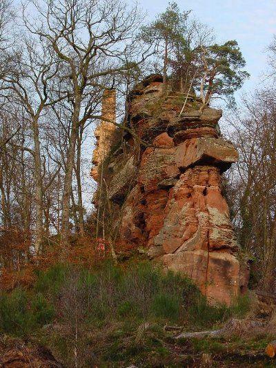 Parc Naturel R U00e9gional Des Vosges Du Nord