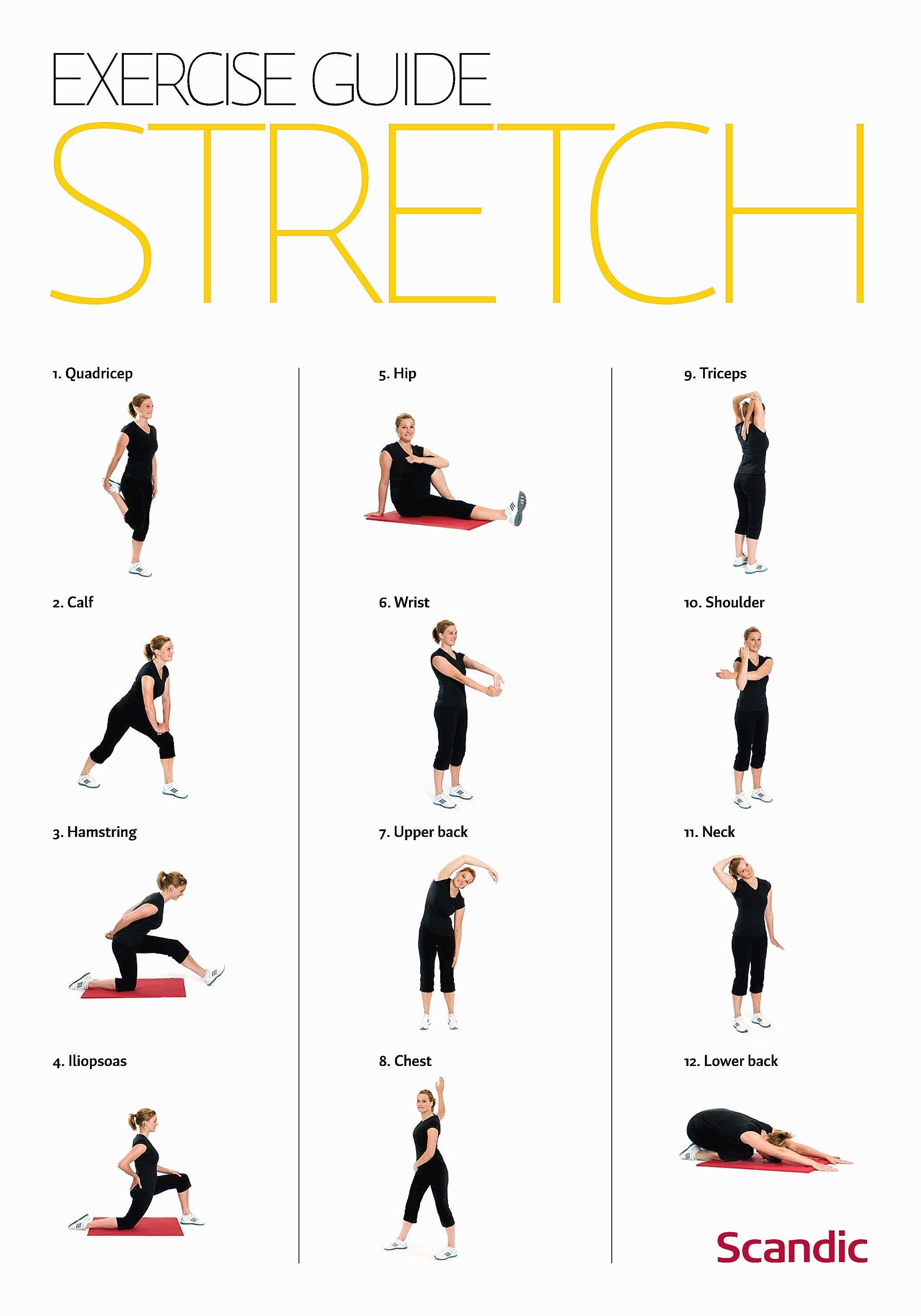 Chair Exercises For Seniors Pdf Lovely Therabanda Upper Body Exercises Back Shoulders Arms T Upper Body Workout Exercise Upper Back Strengthening Exercises