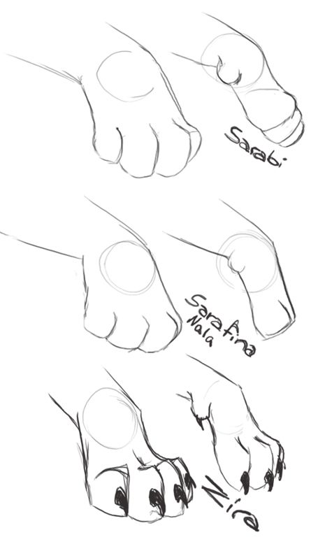 Lion Paw Drawing : drawing, Different, Styles, Drawing, Tutorial,, Animal, Drawings,, Tutorial