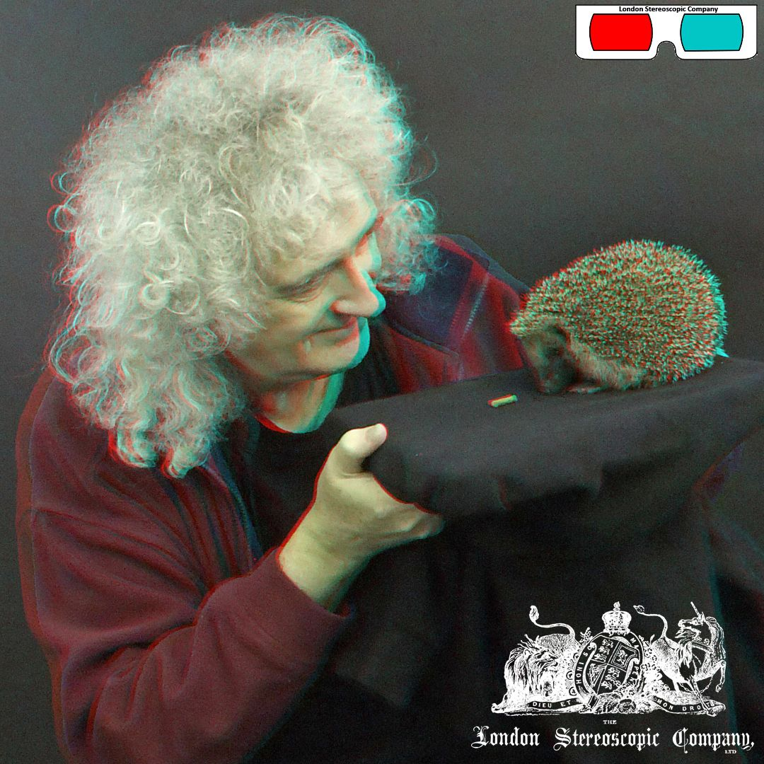 Brian May And The Hedgehog - 3D Anaglyph Photography.