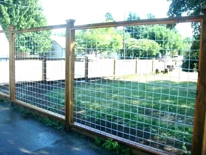Welded Wire Fence Panels Chicken Tractor Supply Stylish Fencing Mesh Run Pa Meta Chicke In 2020 Backyard Fences Cheap Fence Diy Fence