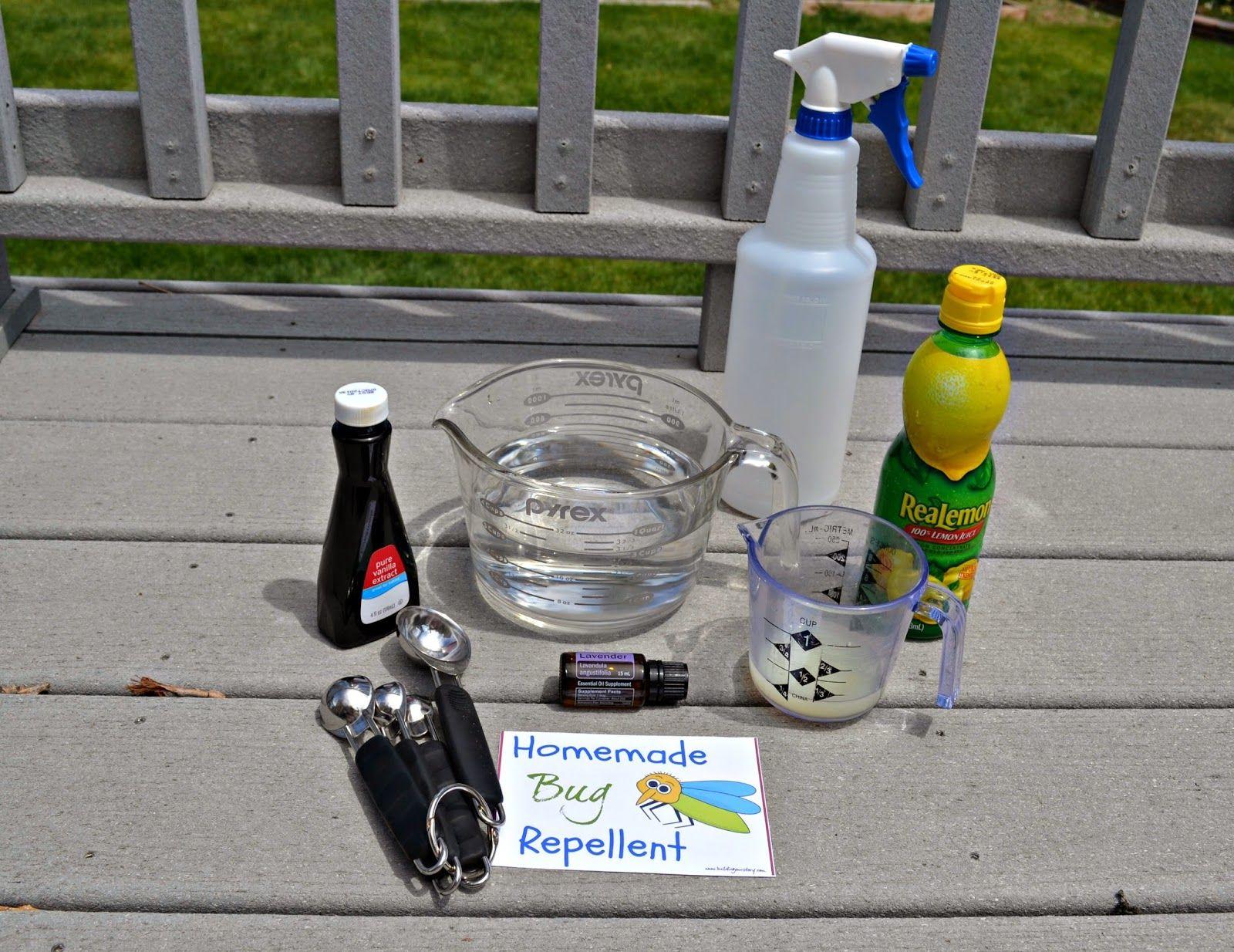 How to Make Homemade Bug Repellent DIY Homemade bug