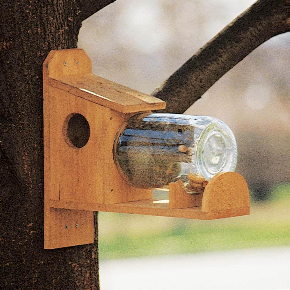 How to Make a Squirrel Feeder Squirrel feeder diy