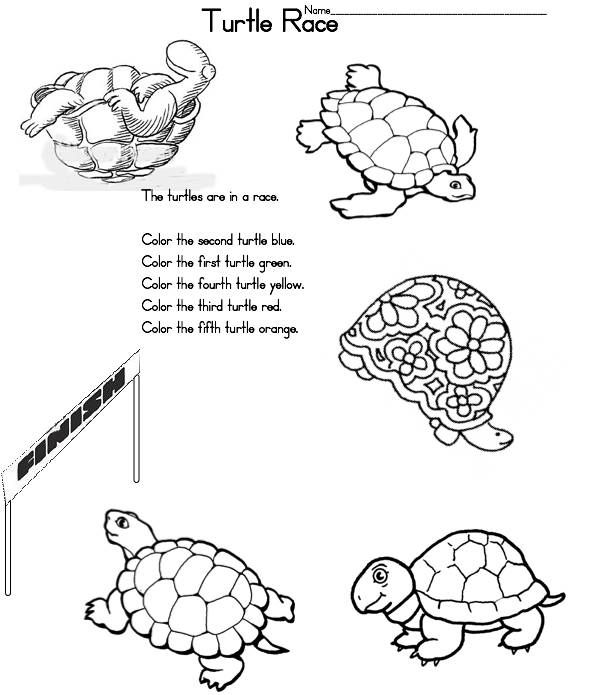The Foolish Tortoise A To Z Kids Stuff Turtle Race Math Activity Ocean Theme Kindergarten Ocean Theme Classroom