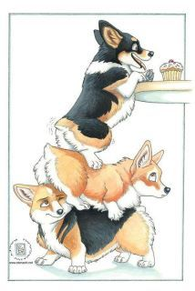 Team Work! lol Corgis... if there is food there is a way to get it :-)