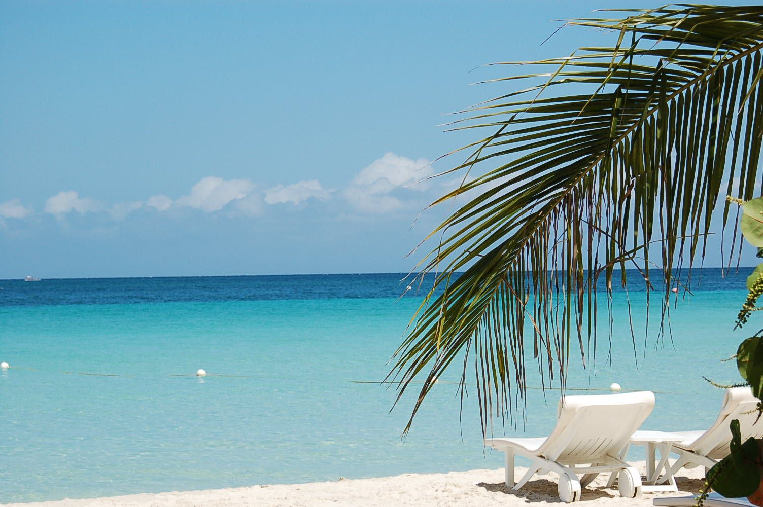 Seven Mile Beach Negril Jamaica Address Phone Number Tickets