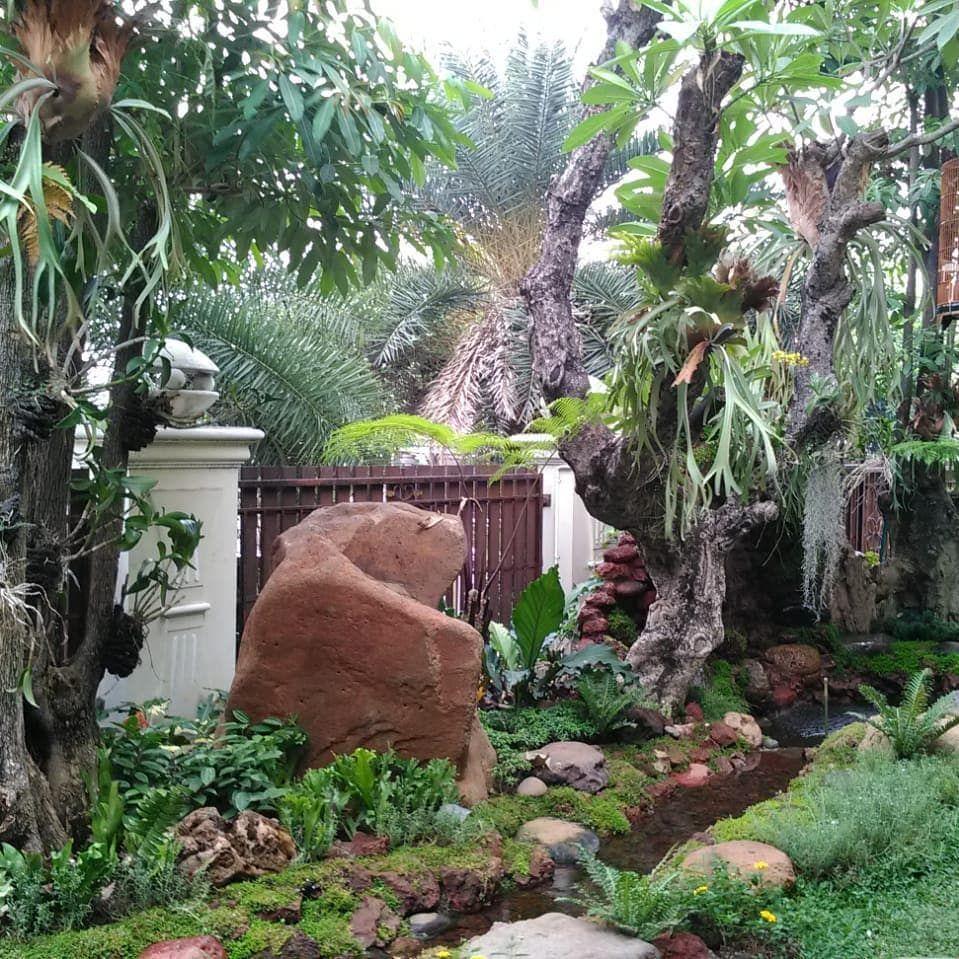 Rainforest Garden Kami Jasa Pembuat Taman Nan Asri Menyediakan Berbagai Layanan Pertamanan Baik Untuk Ruma Landscape Structure Landscape Plan Ideal Gardens