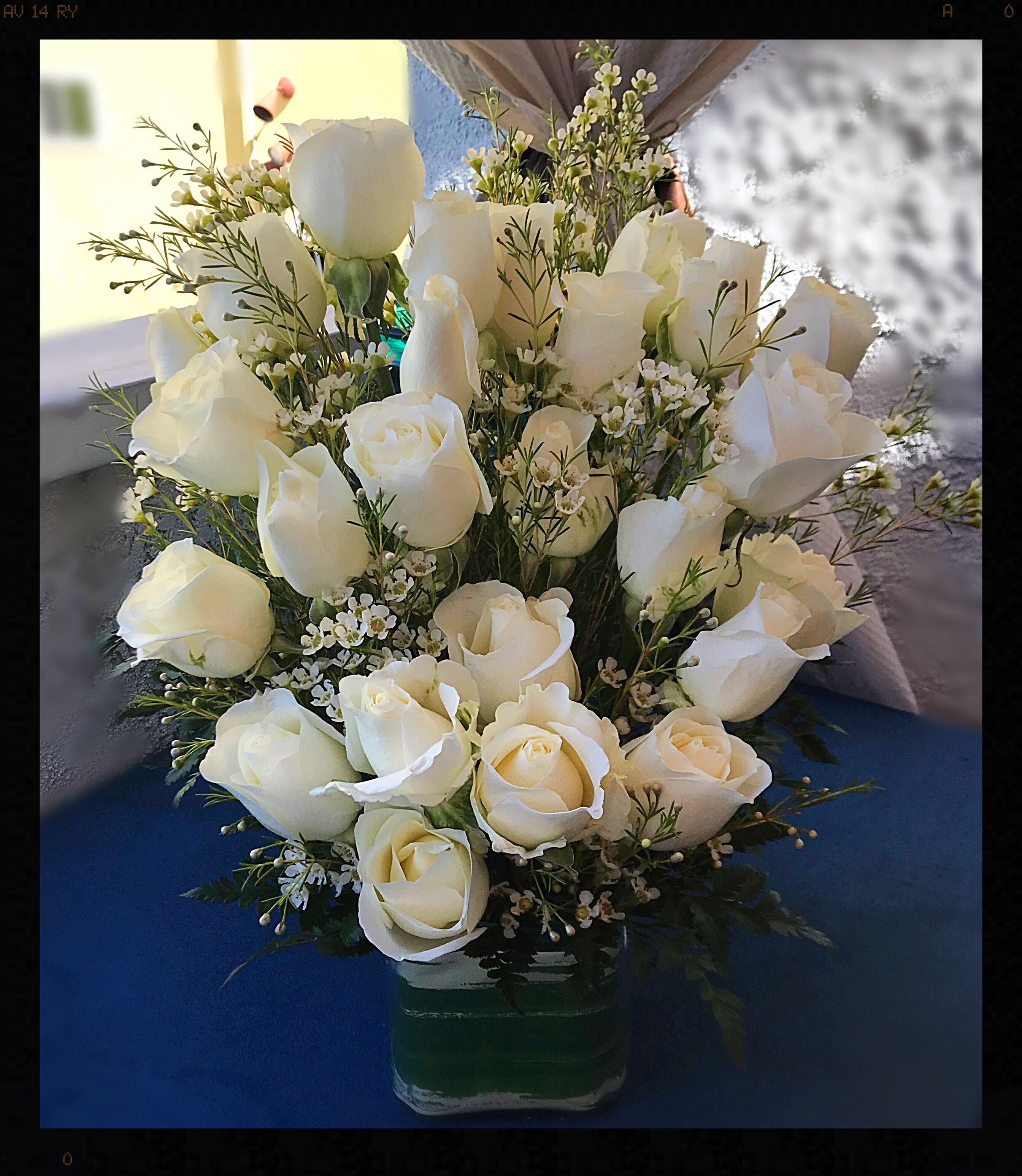 Pure White Roses Beautiful Simple Floral Gallery Pinterest