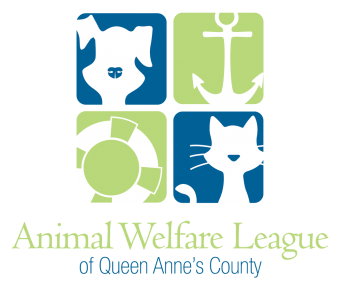 Awlqac Animal Welfare League Of Queen Anne S County Volunteer In