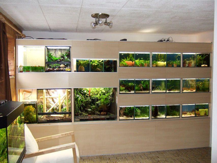 мягкой аквариумные хозяйства фото пола сторону