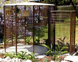 Outdoor Bird Aviaries Cages My Backyard Birds Love This Feeder