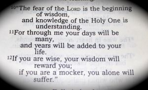 Proverbs - Get Some Wisdom!
